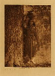 volume 16 facing: page  40 In the forest - Taos - photogravure plate