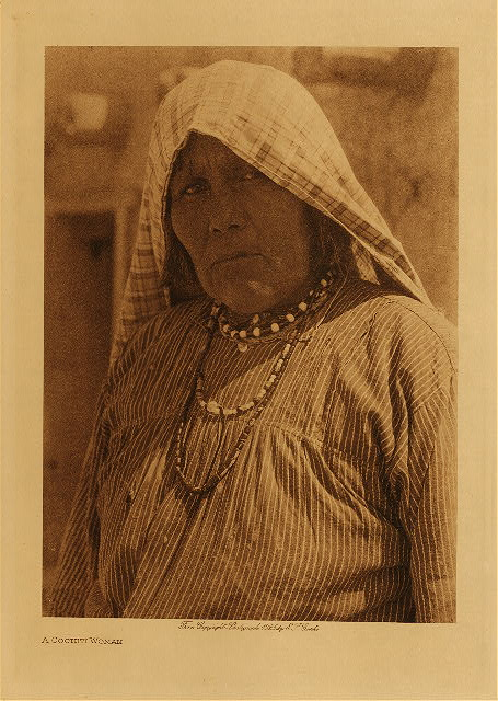 volume 16  facing: page  100 A Cochiti woman