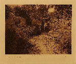 volume 17 facing: page  42 By the old well at San Juan - photogravure plate