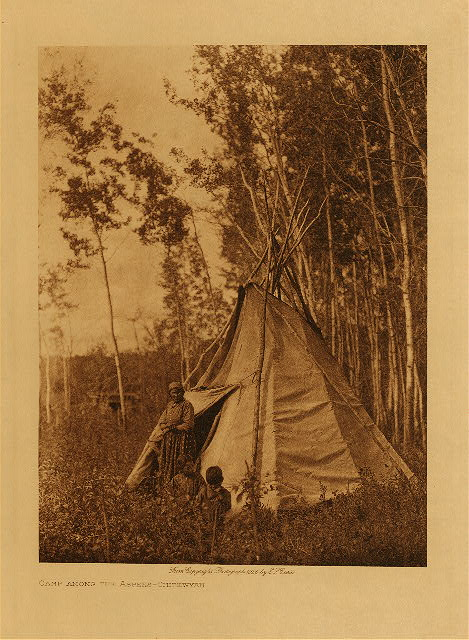 volume 18  facing: page  12 Camp among the aspens - Chipewyan
