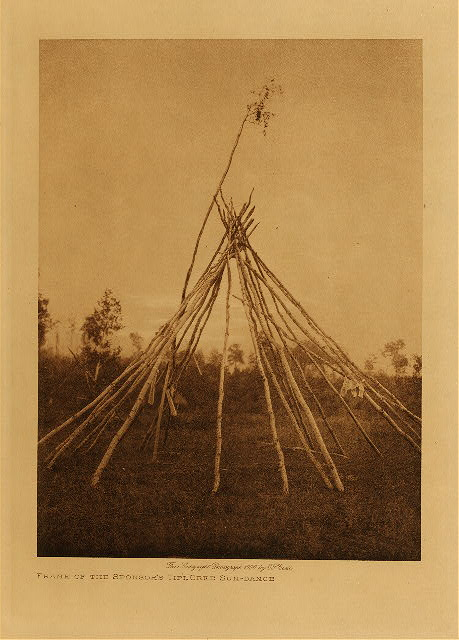 volume 18  facing: page  84 Frame of the sponsor's tipi, Cree sun-dance