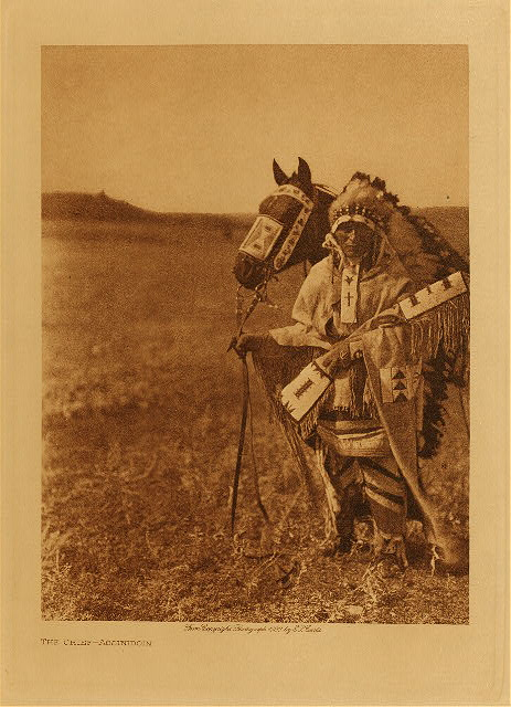 volume 18  facing: page  166 The chief - Assiniboin