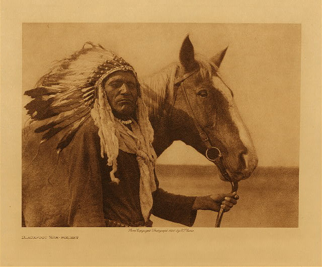 volume 18  facing: page  194 Blackfoot war-bonnet