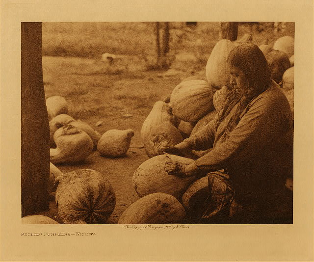 volume 19  facing: page  50 Peeling pumpkins - Wichita