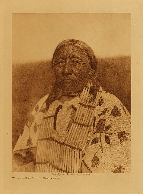 volume 19  facing: page  86 Wife of Old Crow - Cheyenne