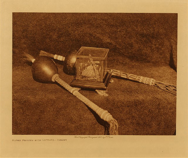 volume 19  facing: page  208 Altar peyote with rattle - Osage