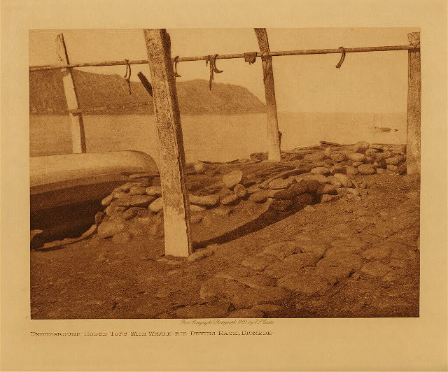 volume 20  facing: page  118 Underground house tops with whale-rib drying rack, Diomede