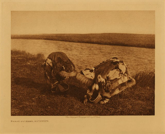 volume 20  facing: page  162 Berry-pickers, Kotzebue