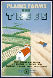 Image: Plains        farms need trees
