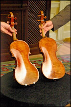 Image: Two Guarneri violins shown side by side