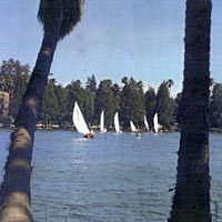 Sailboats on Lake Evans, 1985