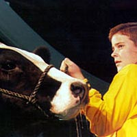 American Royal Livestock Show, Hale Arena, October 1998