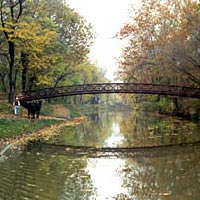 Mules are led down the towpath the last day of the 1996 season at Metropark