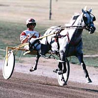 Harness racing action in the 1999 Little Brown Jug