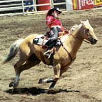 Jodi Chastian, Sisters Rodeo Queen, 1999