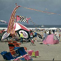 Kite-flying at Long Beach