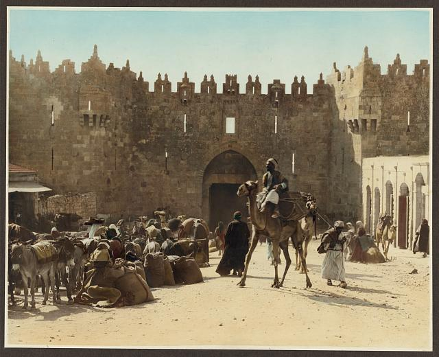 Camel pack train at the Damascus Gate, Jerusalem, 1919.