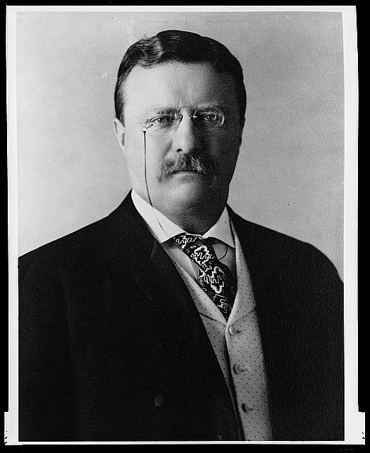Teddy Roosevelt