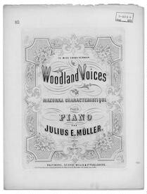 Woodland voices, op. 163
