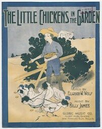 The  little chickens in the garden