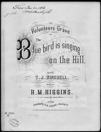Blue bird is singing on the hill, or The Volunteers grave