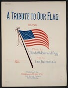 A  tribute to our flag song